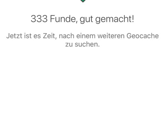 Mein 333 Fund